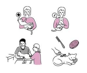 ペット(猫)のお世話イラスト